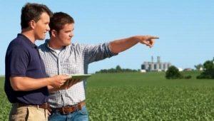 Как начать и с чего свой бизнес с нуля в маленьком городе: идеи для села и деревни, все необходимое для ведения сельскохозяйственного дела