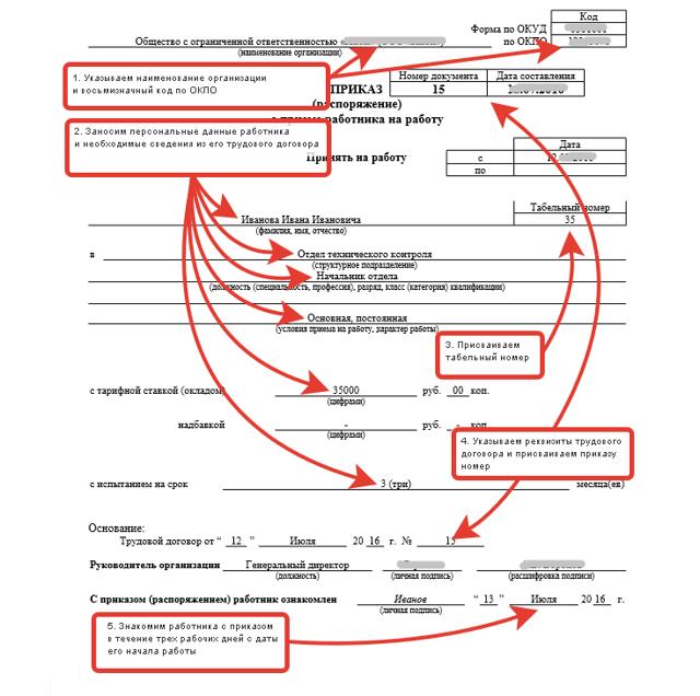 Оформление нового сотрудника: какие документы нужны для устройства на работу