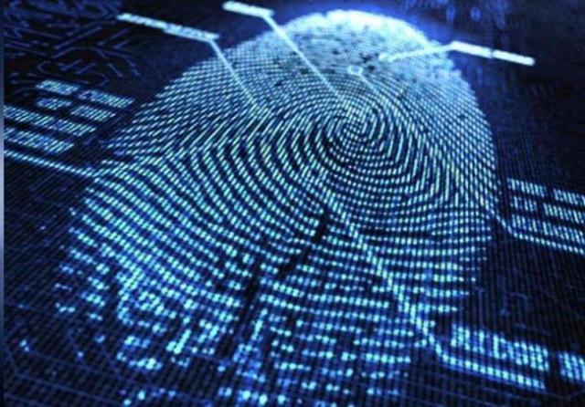 Что относится к персональным данным физического лица и юридической организации, что ими не является, какая еще информация о сотруднике сюда входит?