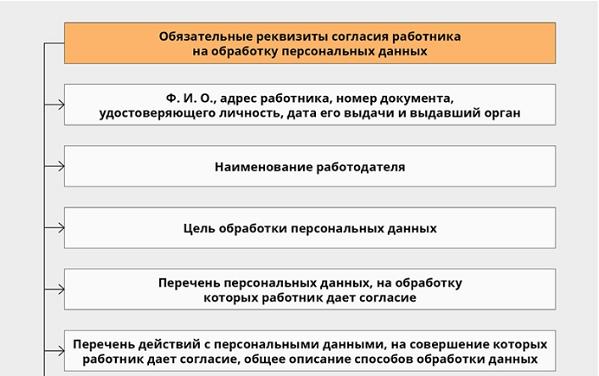 Согласие сотрудников на обработку персональных данных: образец оформления и ответственность организации при приеме на работу