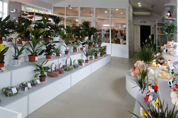 Как открыть цветочный магазин: практическая пошаговая инструкция