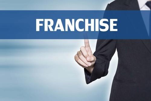 Франшизы: что это, стоит ли брать, сферы, в которых они предлагаются, преимущества и недостатки