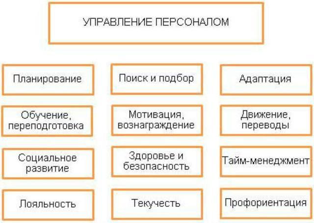Должностные инструкции менеджера: как составить для каждого вида